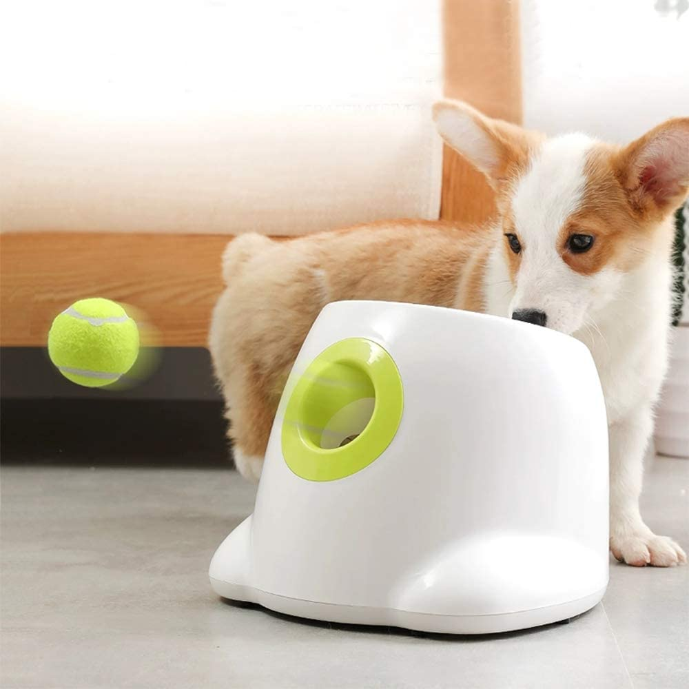 best toys for Golden Retrievers puppies
