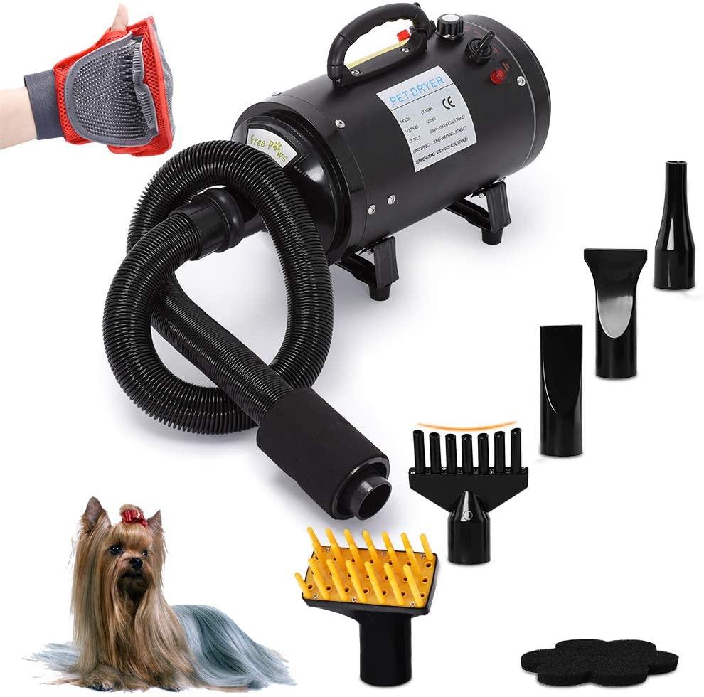 best dog dryer for Golden Retrievers