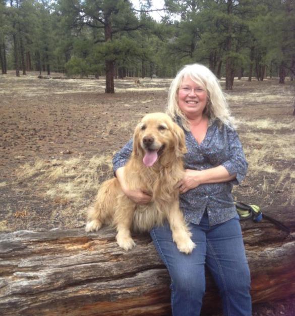 best Golden Retriever breeders in Colorado