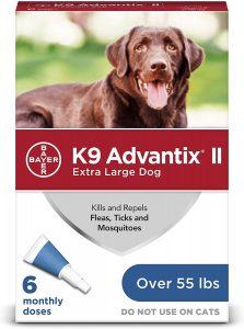 best flea medicine for Golden Retrievers