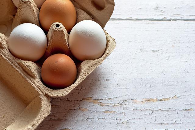 can golden retrievers eat eggs