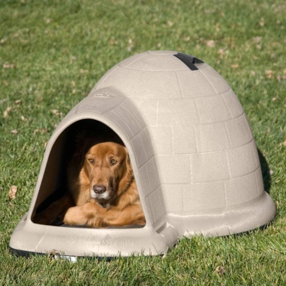 dog houses for golden retrievers