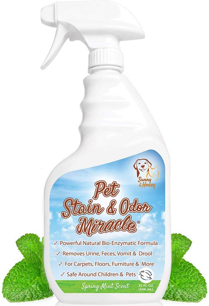 best dog urine smell remover