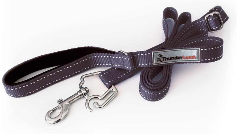 best leashes for Golden Retrievers